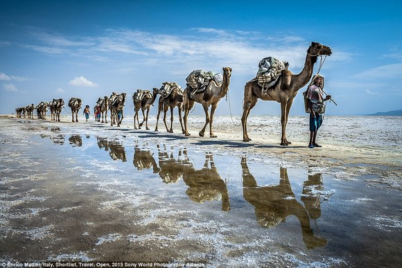 2601213100000578-2965645-Camel_train_Italian_photographer_Enrico_Madini_entered_this_sump-a-63_1424728828343.jpg