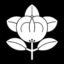 tachibana.png